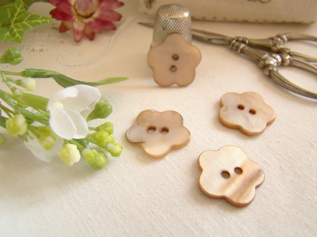 Joli petit bouton en nacre teintée marron en forme de fleur Ø 18mm